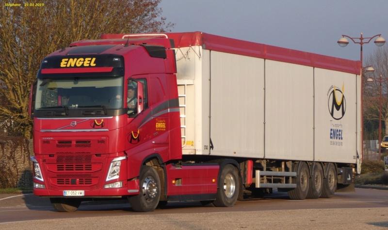 Engel (Margerie Hancourt) (51) (repris par transports Malvaux) P1010043