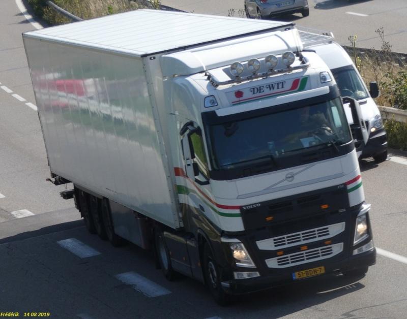 A De Wit Transport b.v (Poeldijk) P1010710