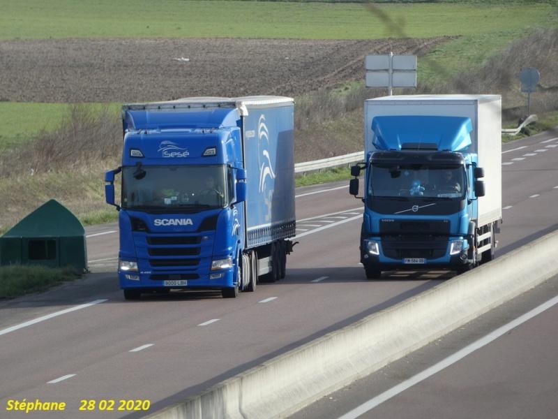 Photos avec plusieurs camions - Page 42 P1020224
