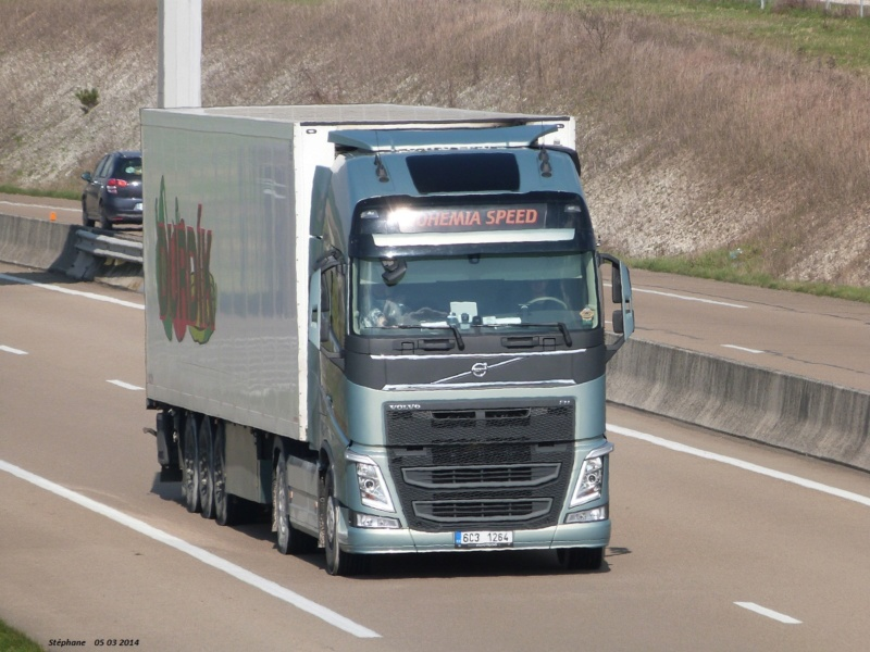 Bohemia Speed  (Tyn nad Vltavou) P1200117