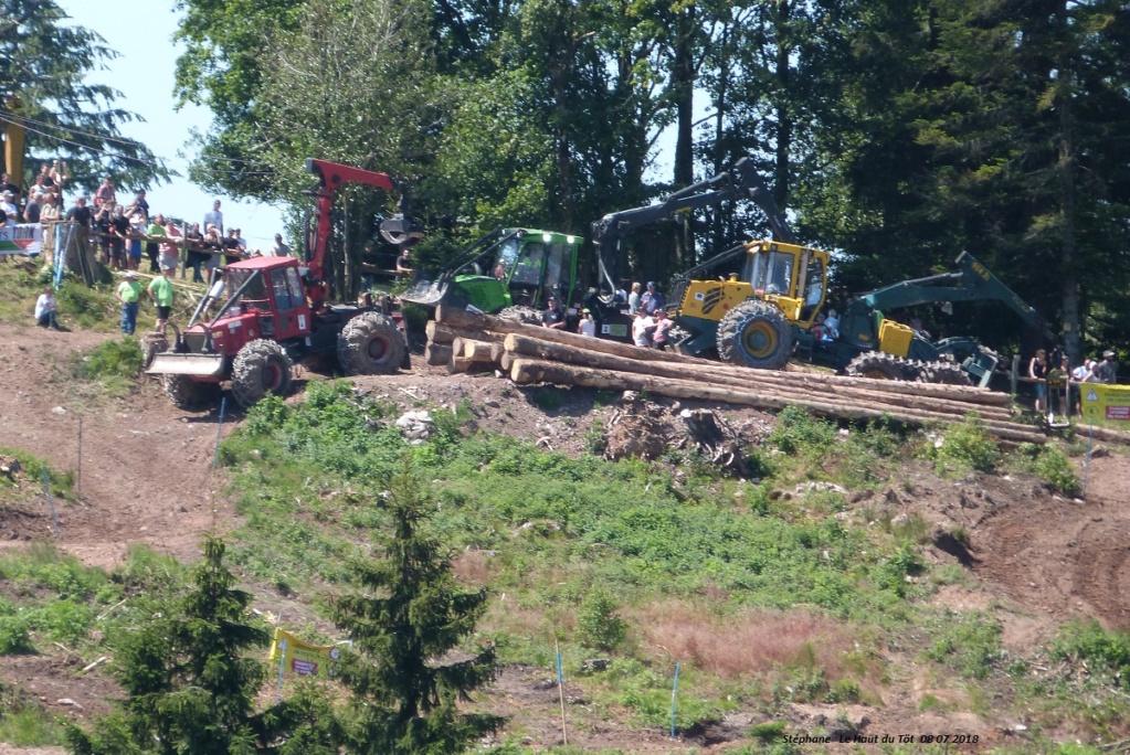 La fête du bois au Haut du Tôt (88) les 7 et 8 juillet 2018 P1430410
