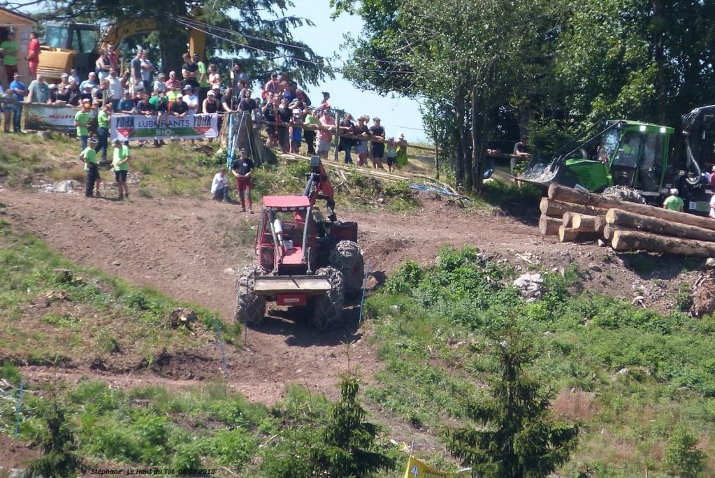 La fête du bois au Haut du Tôt (88) les 7 et 8 juillet 2018 P1430413