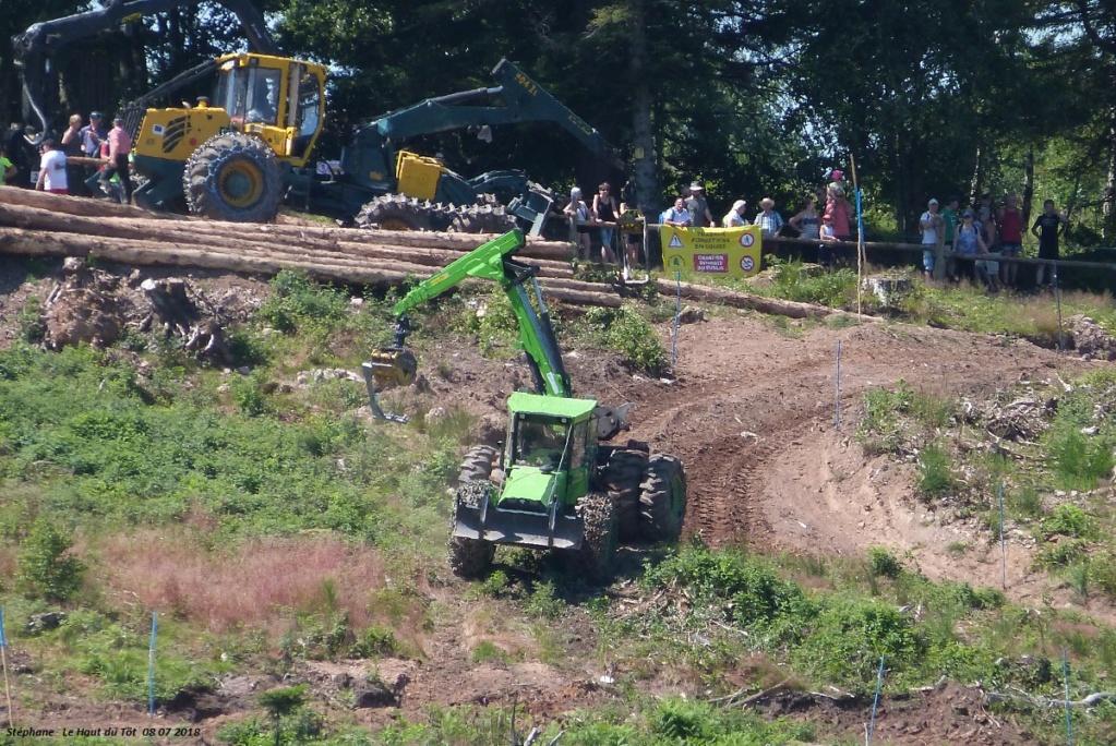 La fête du bois au Haut du Tôt (88) les 7 et 8 juillet 2018 P1430419