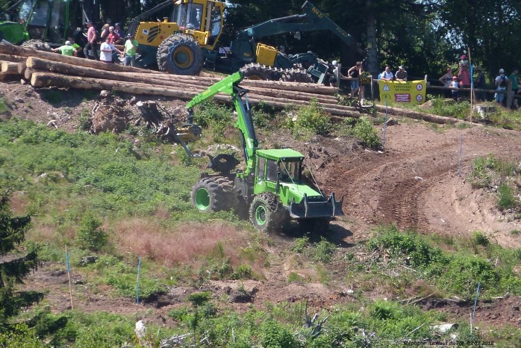La fête du bois au Haut du Tôt (88) les 7 et 8 juillet 2018 P1430420