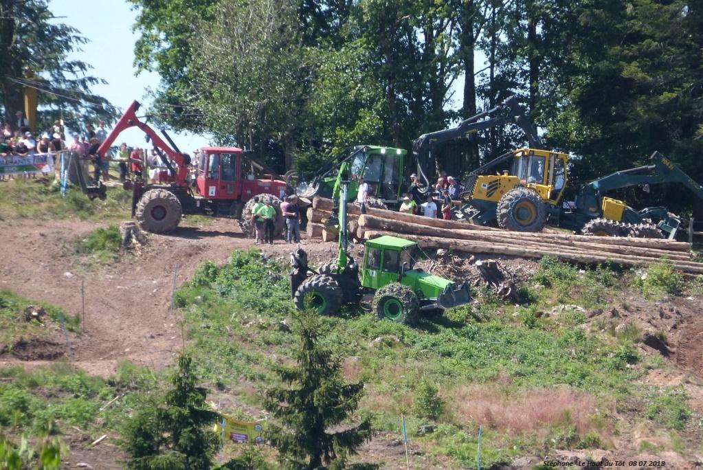 La fête du bois au Haut du Tôt (88) les 7 et 8 juillet 2018 P1430421