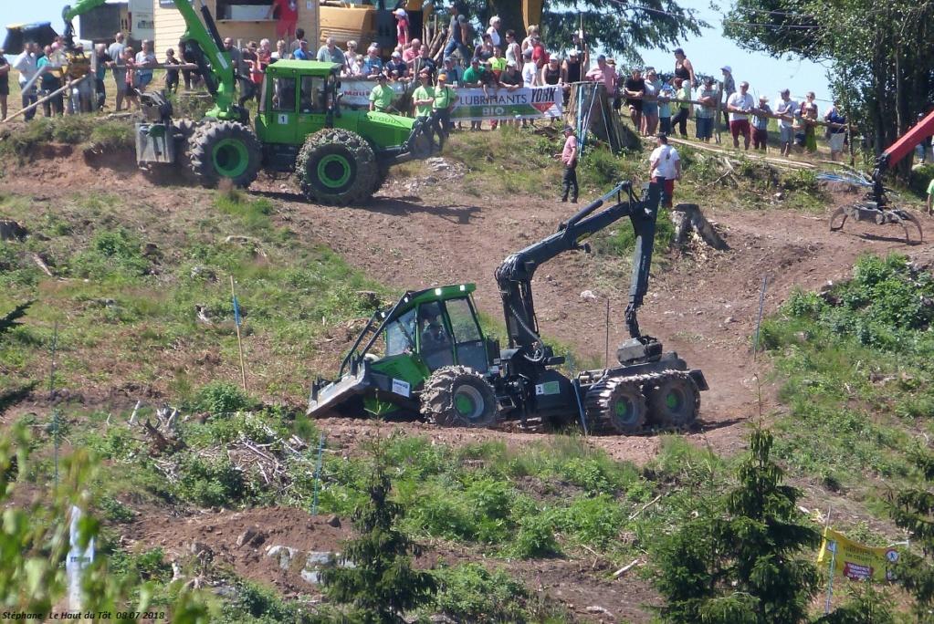 La fête du bois au Haut du Tôt (88) les 7 et 8 juillet 2018 P1430424