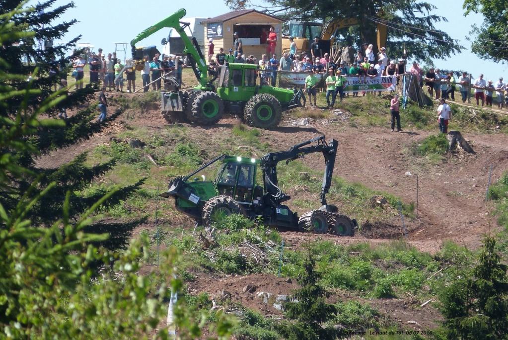 La fête du bois au Haut du Tôt (88) les 7 et 8 juillet 2018 P1430425