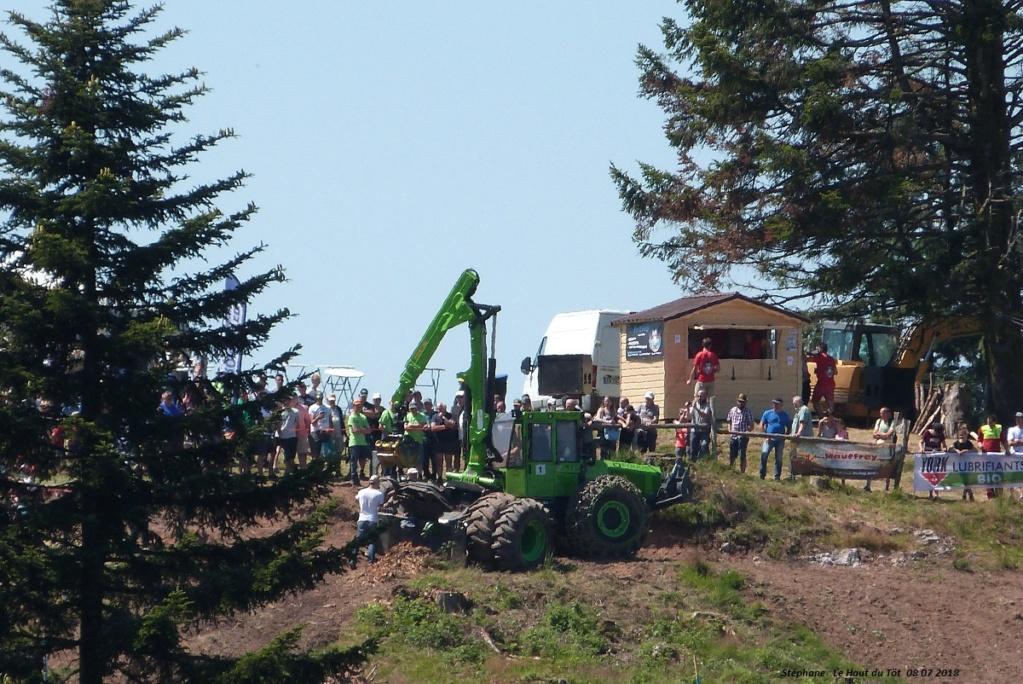 La fête du bois au Haut du Tôt (88) les 7 et 8 juillet 2018 P1430426