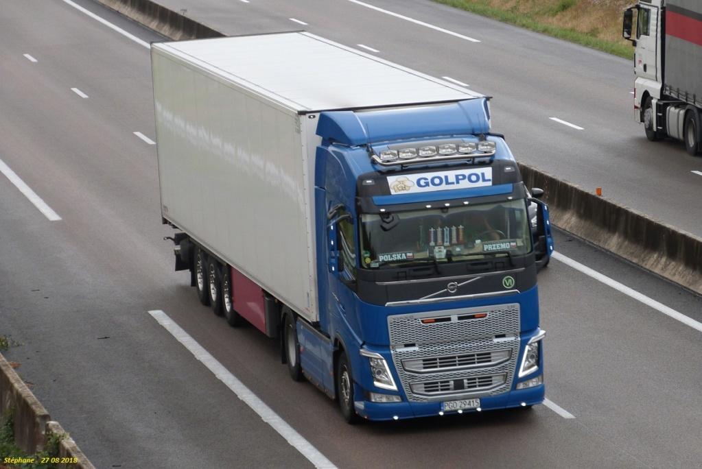 Golpol  (Wielichowo) P1430874