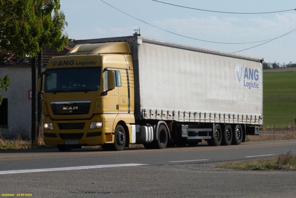ANG Logistic  (Timisoara) P1440035