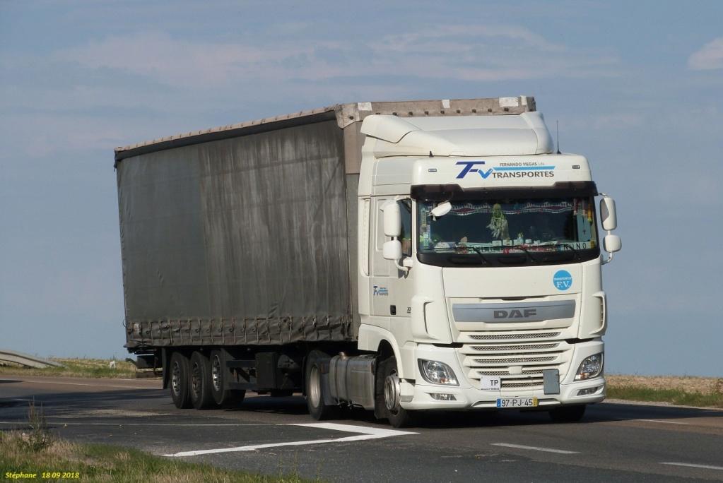 FV Transportes (Fernando Viegas) (Ribamondego Gouveia) P1440060
