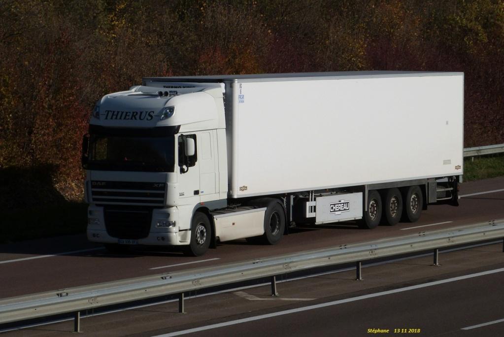 Thierus (Villiers en Lieu) (52) P1440557