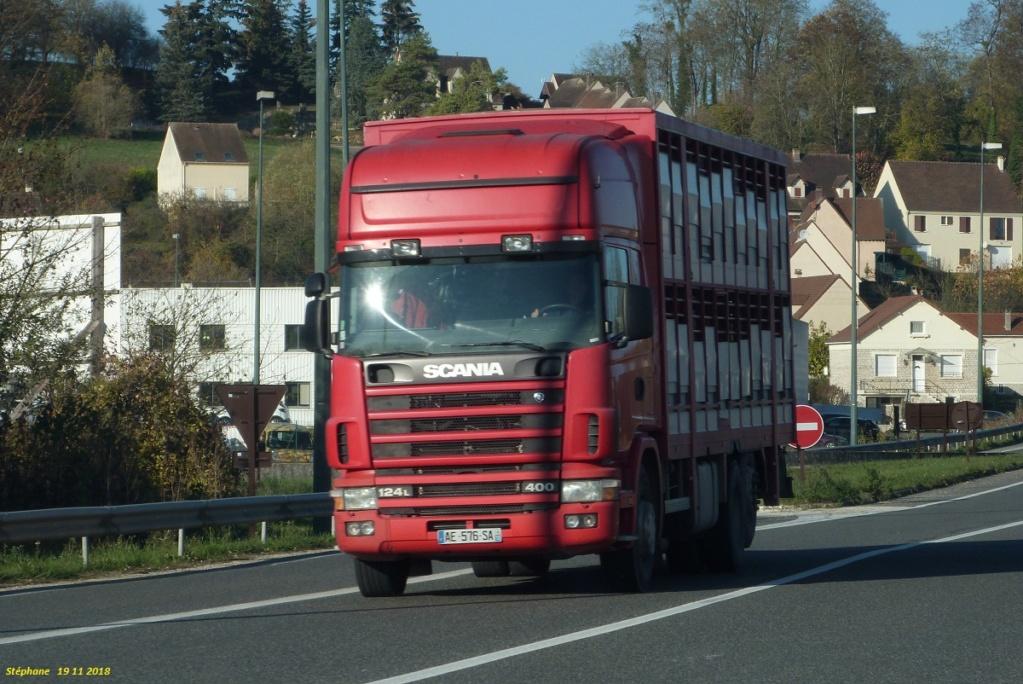 Scania série 4 et R,G,P. - Page 24 P1440925