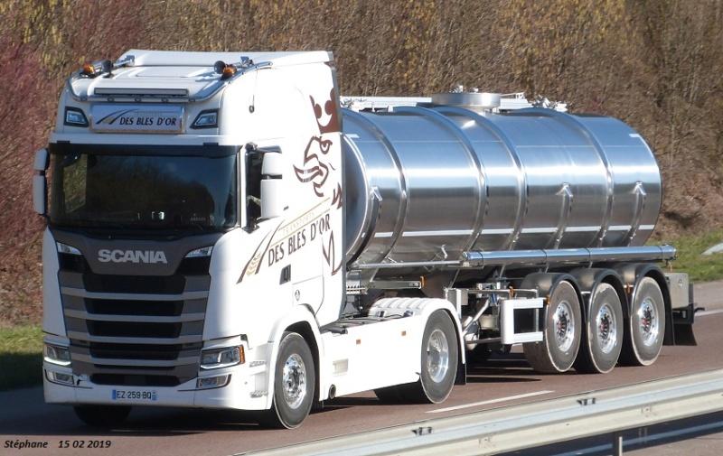 Transports des Blés d'Or (Louan Villegruis Fontaine) (77) P1450669