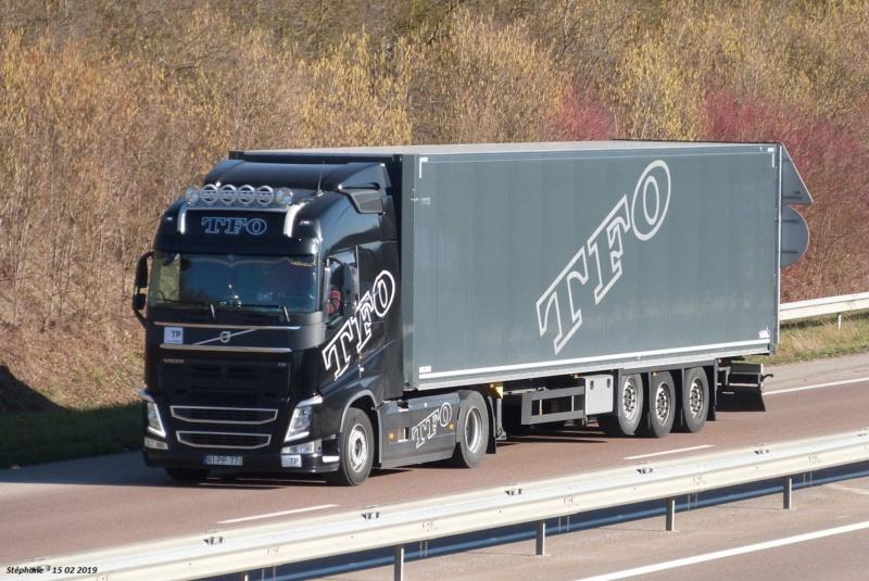 TFO  Transportes Ferreira & Oliveira  (Figueira de Foz) P1450719