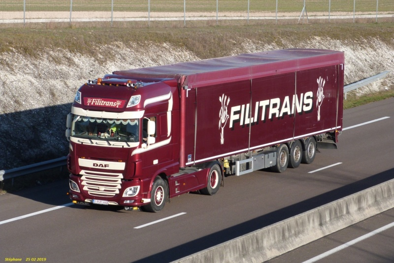 Filitrans  (Loenhout) P1450755