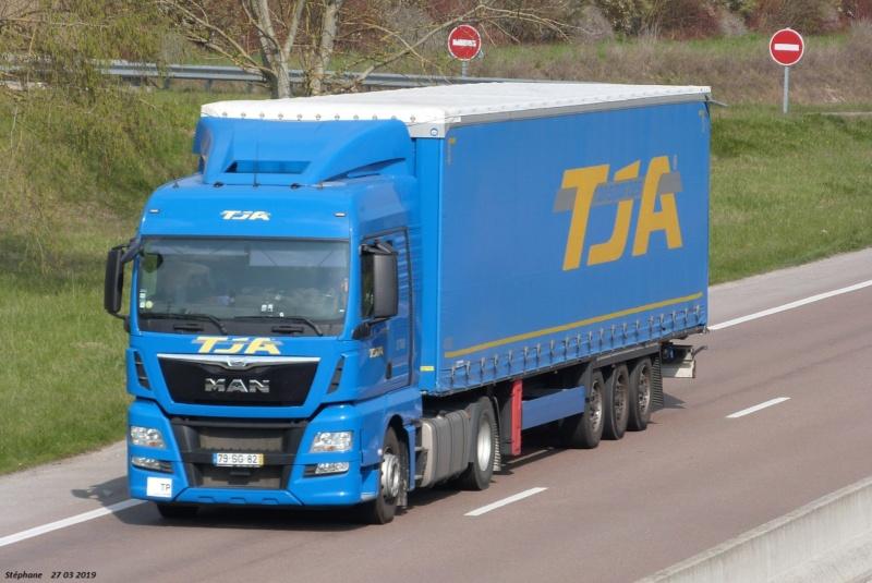 TJA  (Transportes J. Amaral) (Estarreja) - Page 2 P1460085