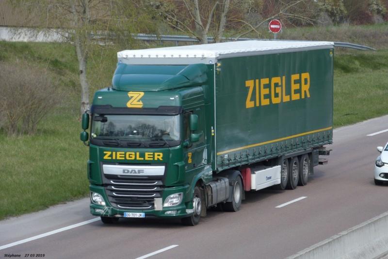 Ziegler - Page 5 P1460110