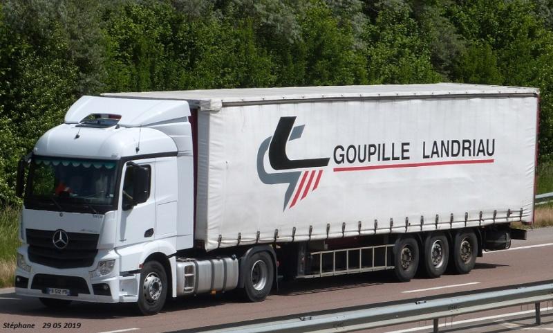 Goupille Landriau (Saint Laurent sur Sevre, 85) P1460536