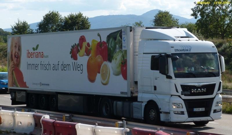 Iberiana frucht  (Massamagrell-Valencia) + (Offenburg, Allemagne) P1470169