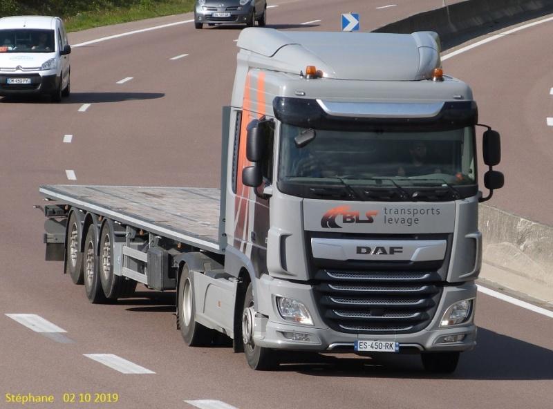 BLS Transports Levage (Ternay) (69) P1470639