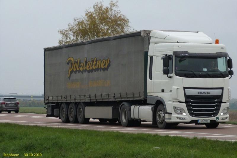 Pölzleitner (Neumarkt am Wallersee) P1480100