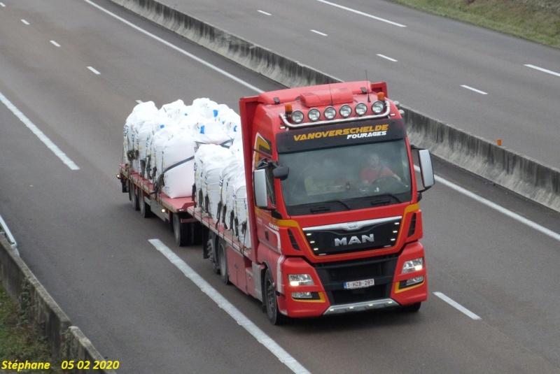 Vanoverschelde (Zonnebeke) P1490578