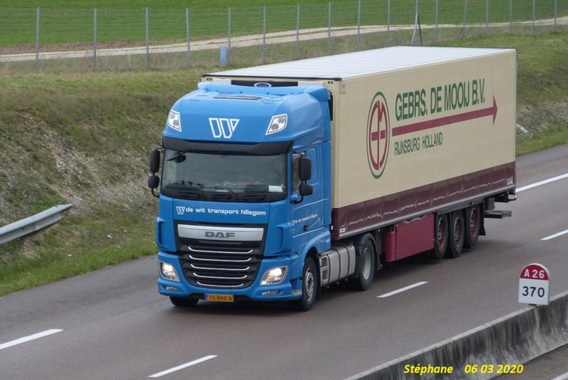De Wit Transport (Hillegom) - Page 3 P1500691