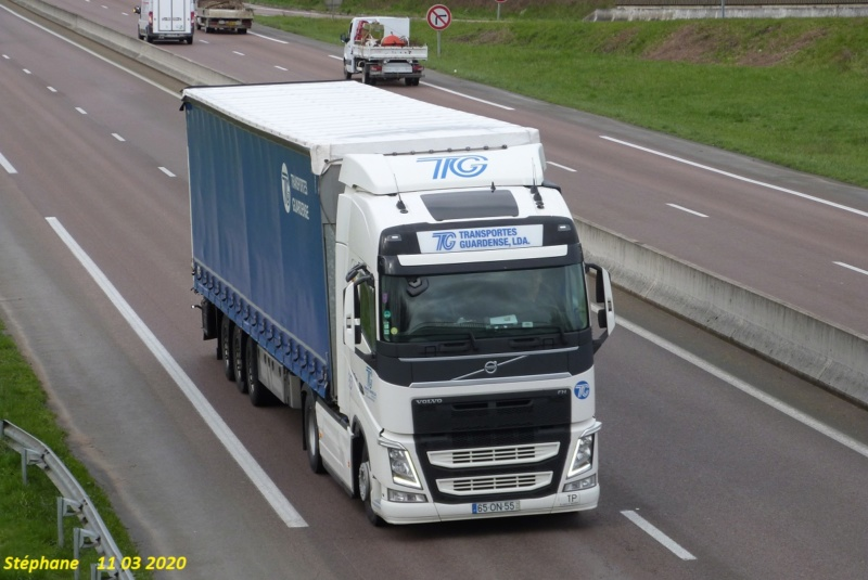 TG  Transportes Guardense Lda P1500816