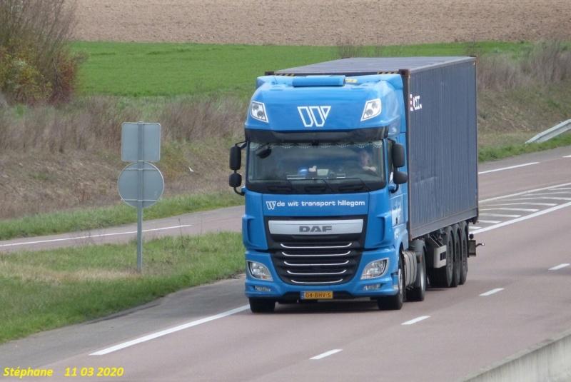 De Wit Transport (Hillegom) - Page 3 P1500940