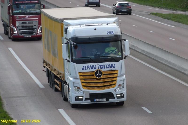 Alpina Italiana (Carré) - Page 2 P1510268