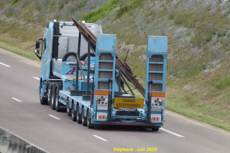 Cepelludu (Puerto de Santander) P1520123