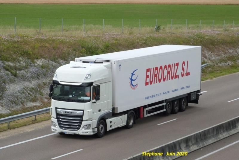 Eurocruz SL (Murcia) P1520236