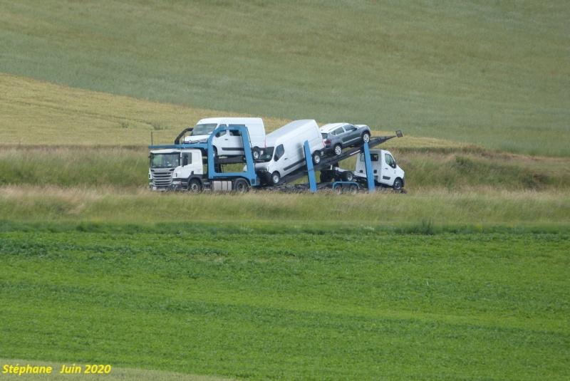 Scania série R G et P - Page 25 P1520277
