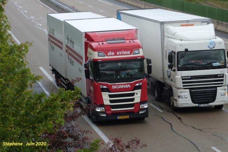 De Vries (Hallum) P1520286
