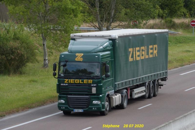 Ziegler - Page 6 P1530120