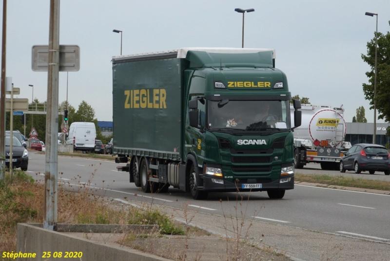 Ziegler - Page 6 P1530485