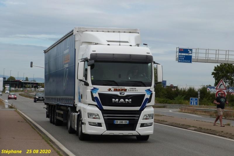 J Haye (Mauleon 79) P1530678