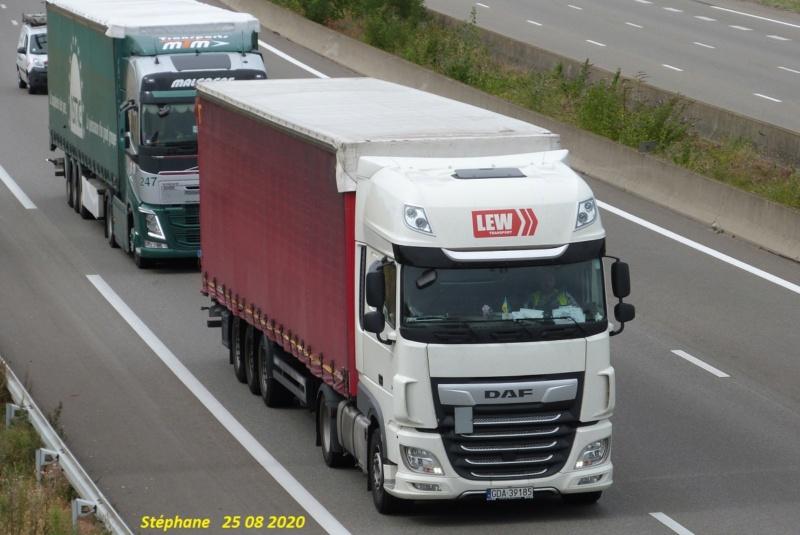 Lew Transport (Gdynia) P1530719