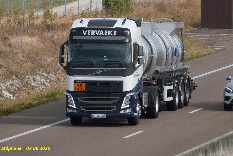 Vervaeke (Zelik) - Page 5 P1530998