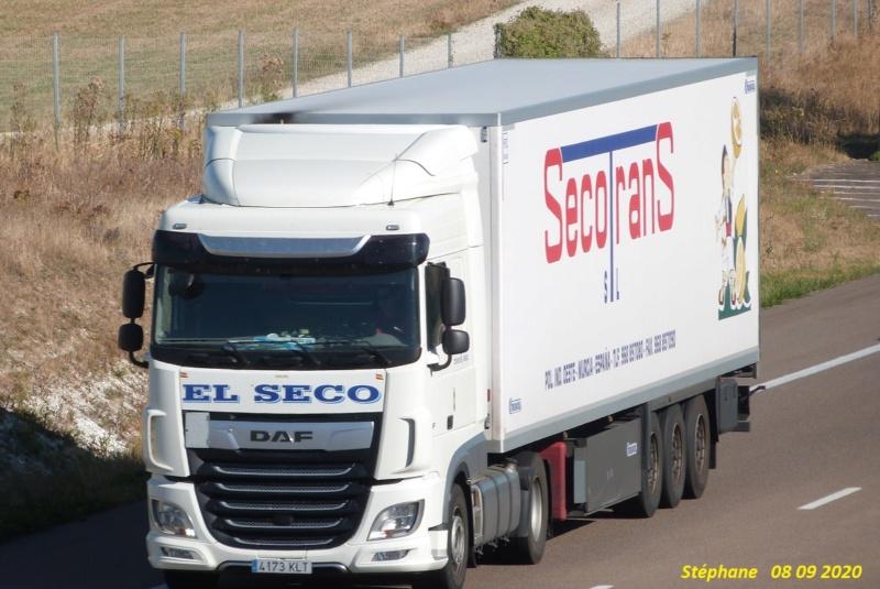 Secotrans  (Murcia) P1540251