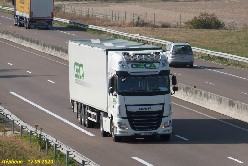 Geca agrotransport  (Meulebeke) P1540874