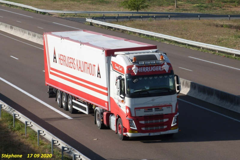 Herrijgers (Kalmthout) P1550021