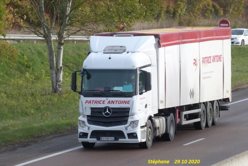 Patrice Antoine (La Veuve) (51) P1550427