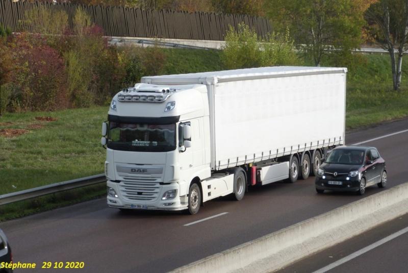 SBT (Société Benoit Transports) (Doué la Fontaine) (49) P1550445