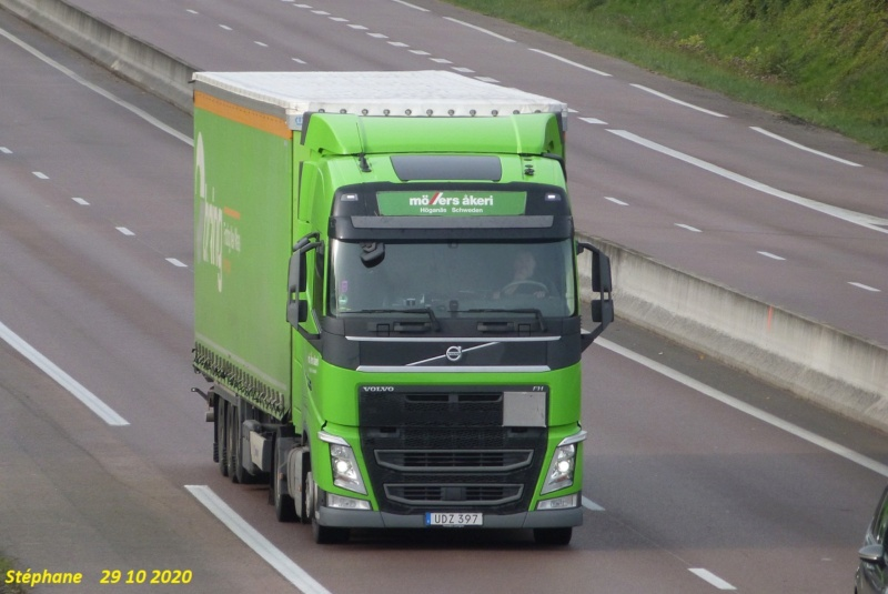 Möllers Akeri (Hoganas) P1550463