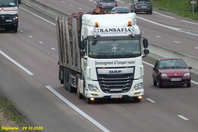 Transaflo (Tubize) P1550515