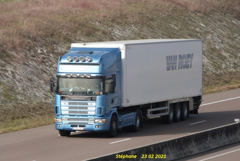 Van Roey (Kortenberg) P1560347