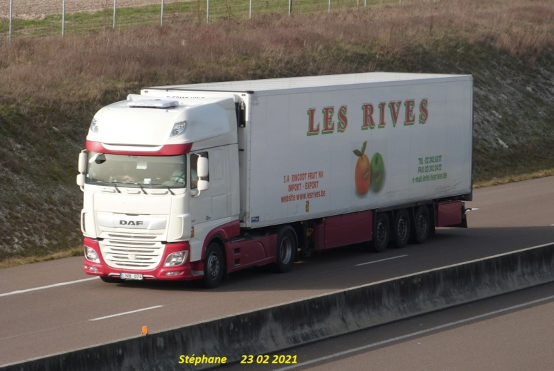 Les Rives - Ringoot Fruit  (Bruxelles) P1560486