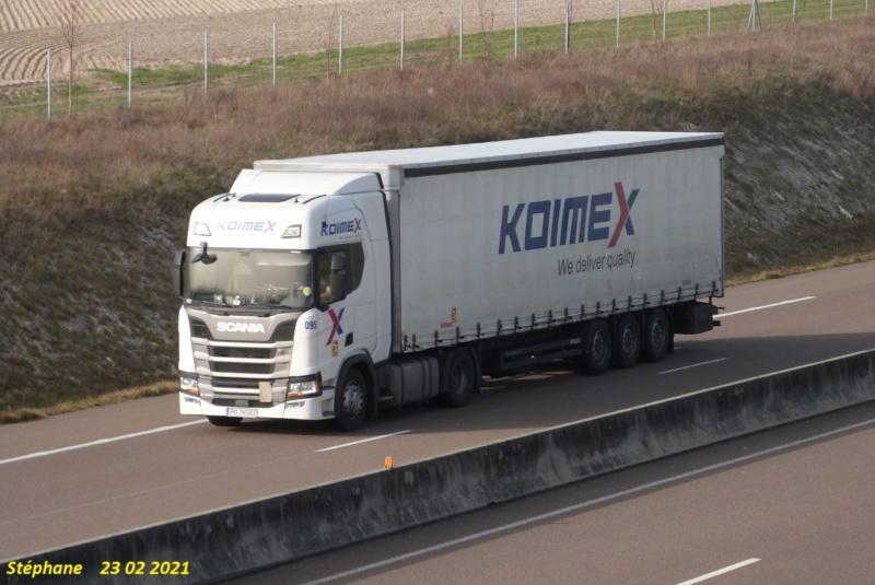 Koimex (Swiebodzin) - Page 3 P1560495